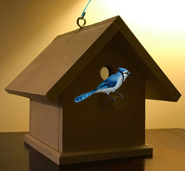 Buy Birdhouse For Bluebirds